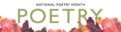 poetry-NPM-banner2